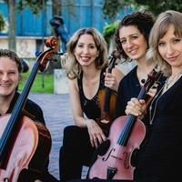 The Axiom Quartet