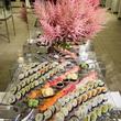 sushi, ten years of todd