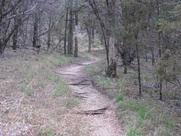 Austin_photo: places_outdoors_pacebend_trail