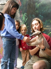 Places-Unique-Houston Zoo