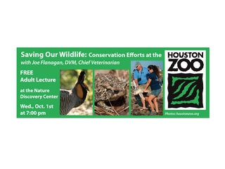 Saving Our Wildlife: Conservation Efforts at the Houston Zoo