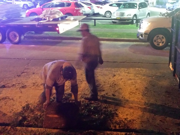 workers at Wendy's on Kirby removing trees November 201
