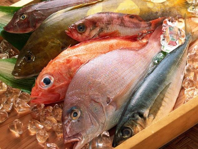 fish, fish market, fish on ice
