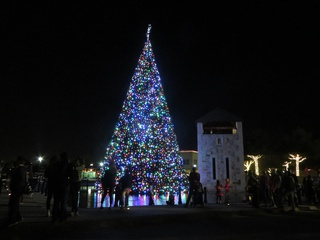 Holiday in the Plaza