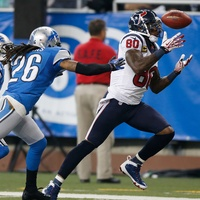 Andre Johnson Lions catch