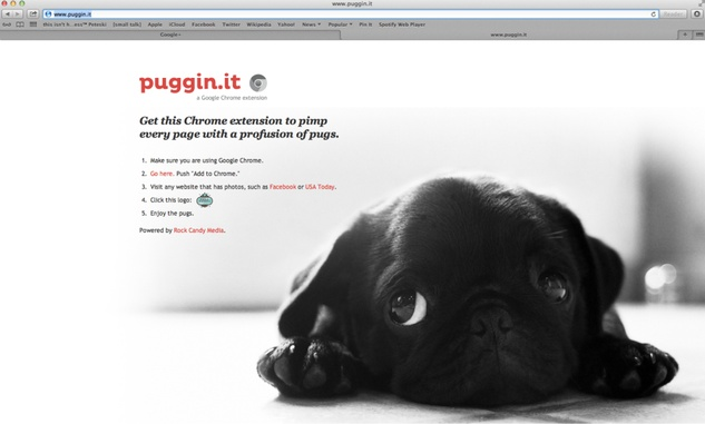 Puggin.it Pug Chrome plug in Rock Candy
