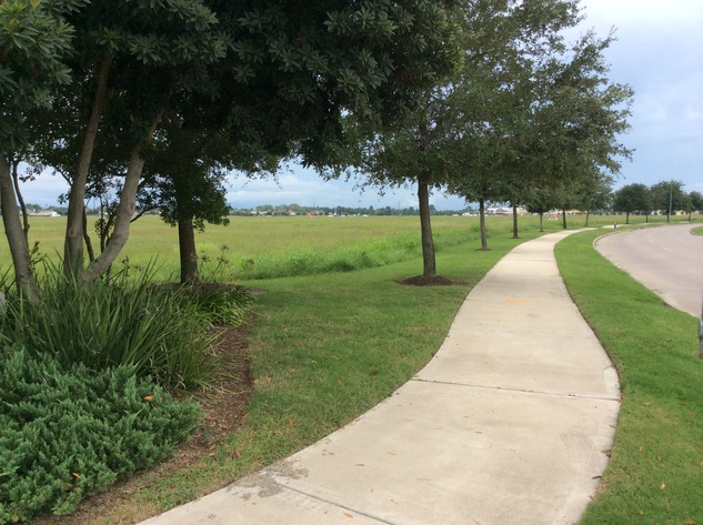 This land in Pearland will be the site of Pearland's first midrise residential project. September 2014
