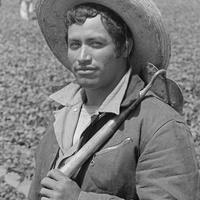 Holocaust Museum Houston presents <i>Bittersweet Harvest: The Bracero Program, 1942-1964</i>