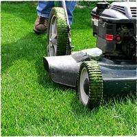 Austin Photo Set: News_Melissa_lawn mowing_march 2012_green grass