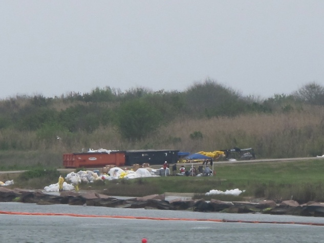 9 Katie Oxford Galveston birds and the oil spill April 2014 Pelican Island