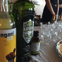 Lucid Absinthe Cocktail Classique Finals