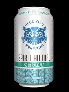 Blue Owl Spirit Animal
