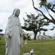 Galveston, haunted tours, Halloween, October 2012, cemetery