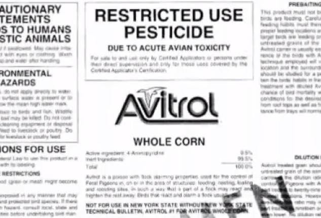 Avitrol bird poisoning