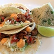 Caracol Ostiones oyster taco