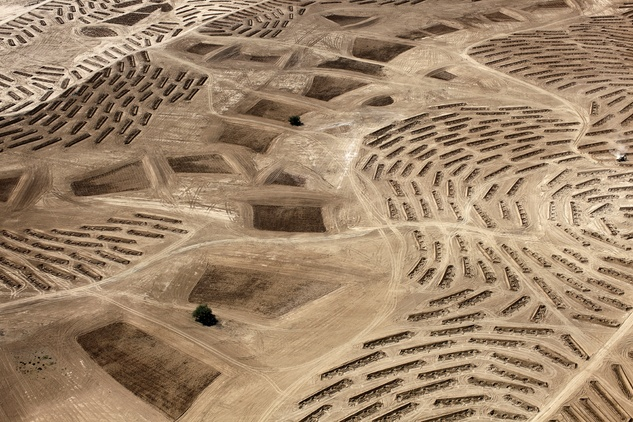 "Homelands and Histories: Photographs by Fazal Sheikh-Latitude 31°21'7""N"
