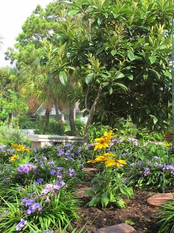 1. Katie Oxford Willem Kegge garden August 2014 Bench, Rudbeckia, and Blue Dwarf petunias