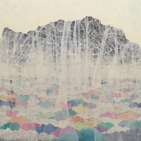 grayDUCK Gallery presents Congitopia - Jana Swec