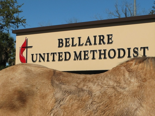 9 Katie Oxford Blessing of the Animals at Bellaire United Methodist March 2015 Waiting in the blessing line