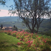 Jane Howze Italy trip Tuscany September 2014 View of Tuscan hills
