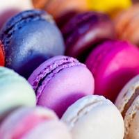 Maison Burdisso Parisian Macarons