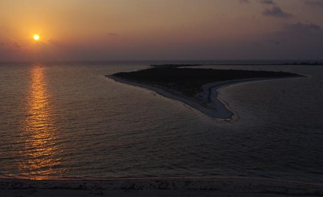 tortugas_sunrise_bushkey