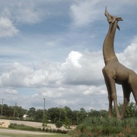 Giraffe sculpture at Dallas Zoo