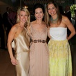 lisa rocci, sharon young, margot wruebel, art ball 2014