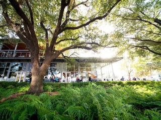 The Grove Houston patio November 2014