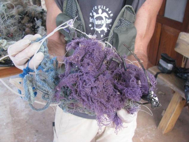 Austin Photo Set: News_Melissa Gaskill_plastic bags_wildlife_jan 2012_plastic