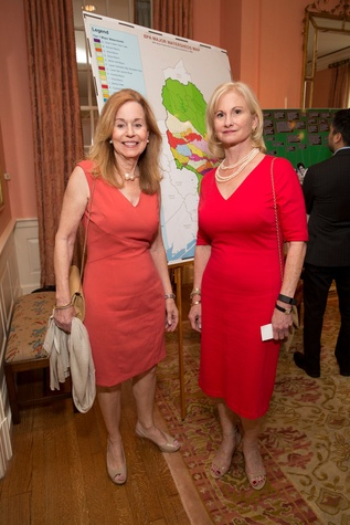 Houston, Bayou Preservation Association Anniversary Luncheon, May 2016, Angela Canghin, Barbara Byrd