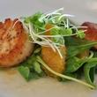 sorrel scallops