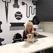 Houston, Aris Market Square, December 2017, Pet parlor