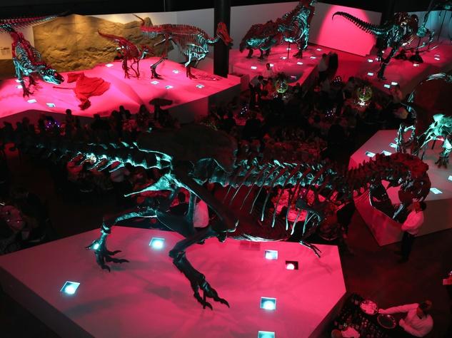 Houston, HMNS Big Bang Ball, March 2017, Morian Hall of Paleontology at HMNS