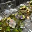 4 Jewels under glass at the Cason-Thrash Bulgari dinner April 2014