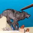 7 El Big Bad interior stuffed wolf or coyote