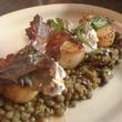 News_Roost_organic curried lentils_diver scallops_grape raita