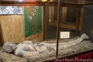 Austin_photo: places_art_museum of the weird_mummy
