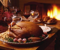 Thanksgiving turkey with wine and fire in fireplace