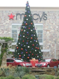 Austin photo: Event_Domain_Christmas Tree