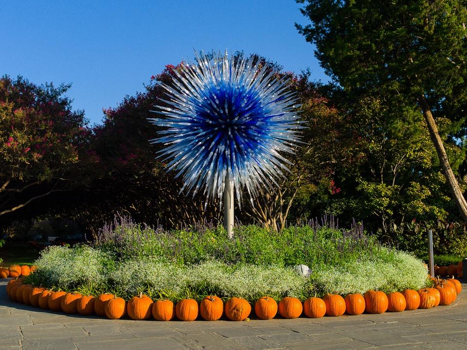 Dallas, Dallas Arboretum, Autumn at the Arboretum, Chihuly, Rod Lindley, Melisa Ambers