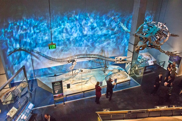 Perot Museum Of Nature And Science Prices