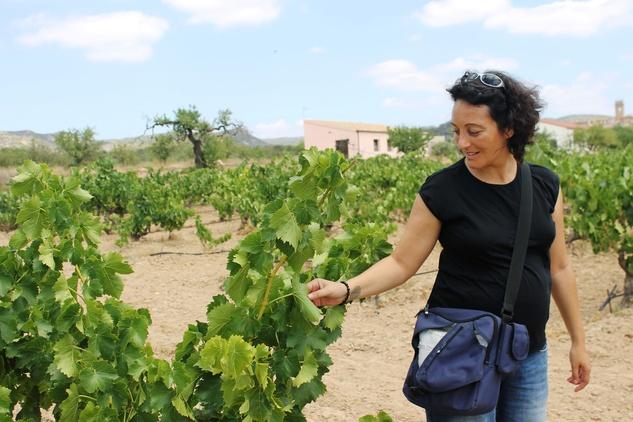 austin photo set: news_sept_2012_matt_texas wine in spain