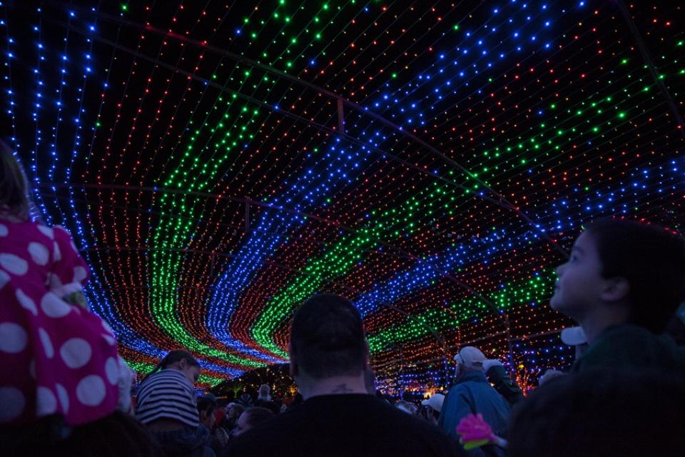 Austin Photo Set: Pages_trail of lights_dec 2012_13