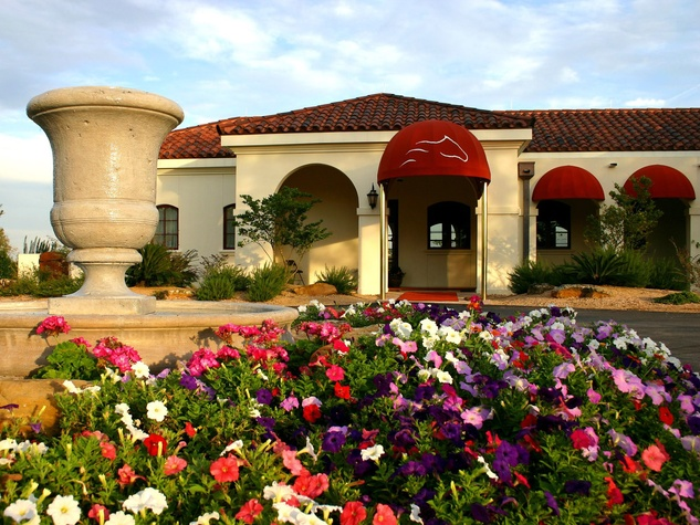 The Inn at Dos Brisas, flowers, entrance
