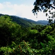 Stephan Lorenz Trinidad travel February 2015 The Arima Valley as seen from the Asa Wirght Nature Center