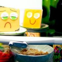 News_fridge_check food