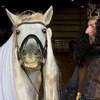 Black Star Sport Horses presents Halloween Horse Show