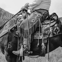 PDNB Gallery presents Cowboys, Cowgirls and Some Indians