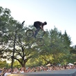 x games rally rider with tree